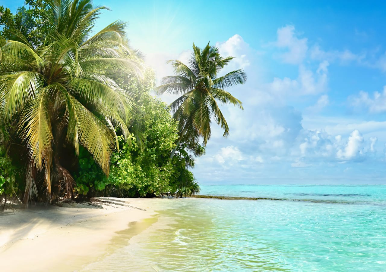 7 Deserted island books for an escape